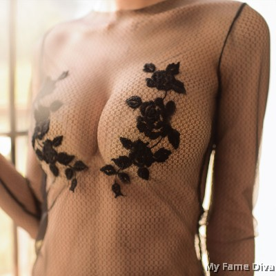 Sheer n Sexy : Fairy Goddess in Mesh Bodysuit Inspired